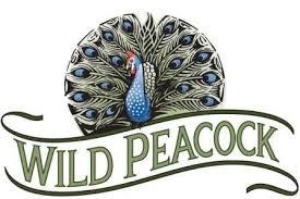 wild peacock2
